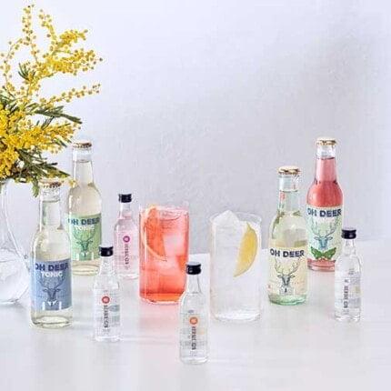 Gin Smagning